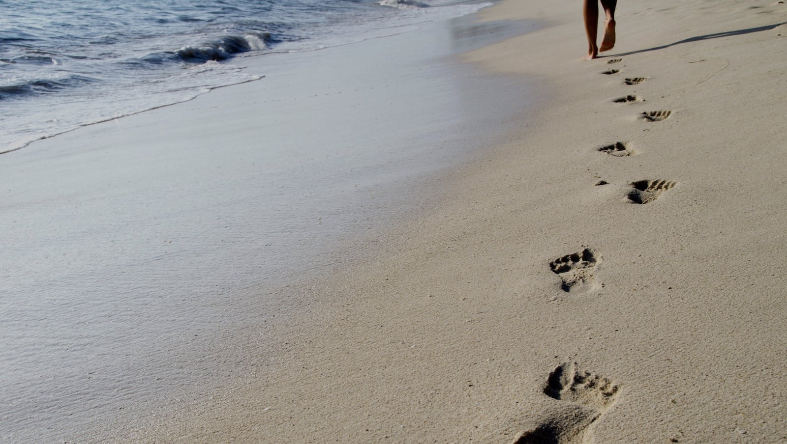 walking-in-other-footsteps